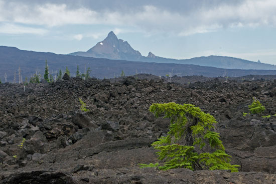 Lava - Mt. Jeffersonwebsite.jpg