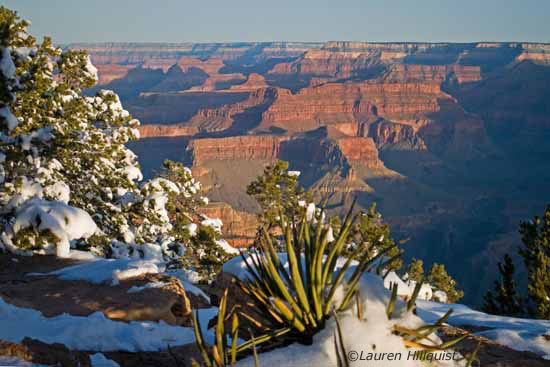 Grand Canyon - xAfter The Storm  - Sunrise at Yayapai Point 5Website copy.jpg
