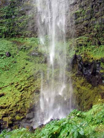 Waterfalls 4website.jpg