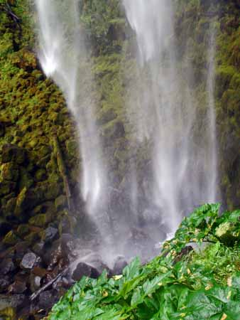 Waterfalls 5website.jpg