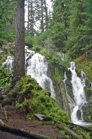 National Creek Falls 1xwebsite.jpg